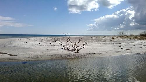 Staunings Ø
