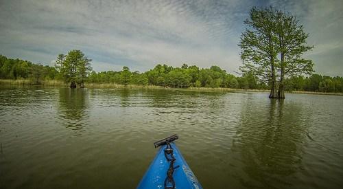 Lake Marion Plantation Islands-28