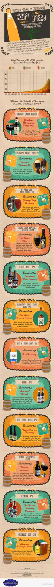 The Top Irish Craft Beers of 2015 - Infographic from HomeBrewWest