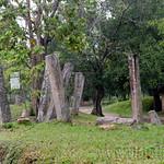02 Viajefilos en Sri Lanka. Anuradhapura 02