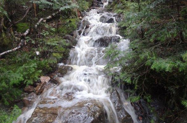Appalachian Trail Rainwater