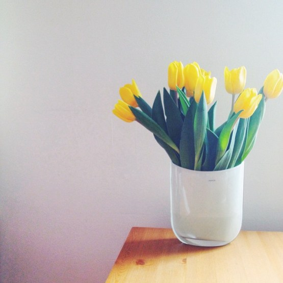 Perfect flowers for Easter.