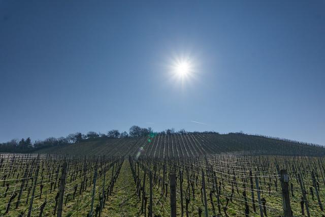 Partielle Sonnenfinsternis über Michaelsberg