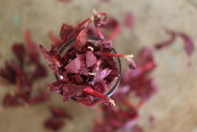 paticheri hibiscus flower syrup (9)