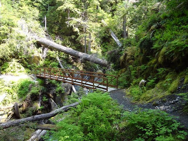 Madeline Creek Bridge