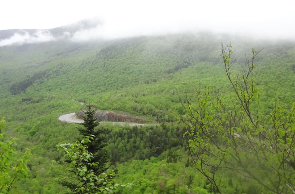 Pinkham Notch View