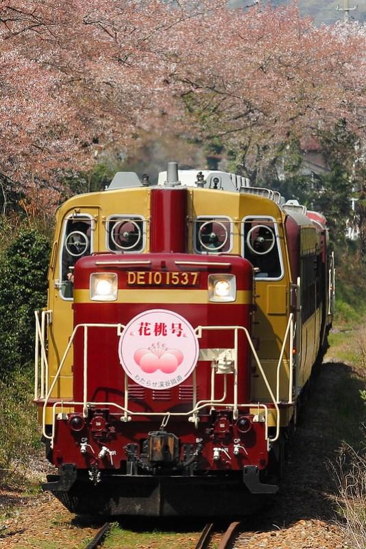 """DE10-1537 """"花桃号"""""""