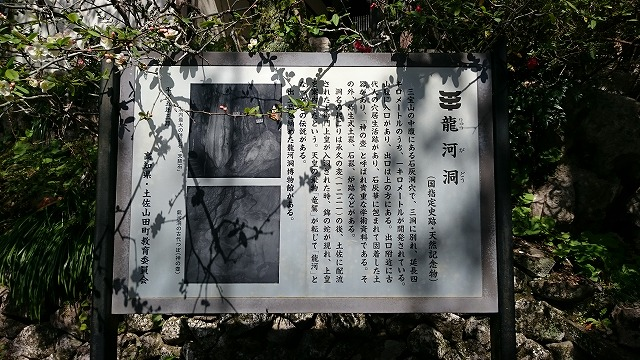 ryugado04