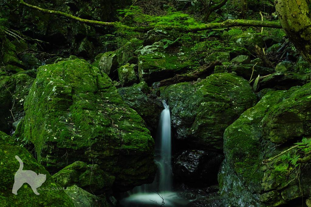 美霞洞渓谷 | 香川県④