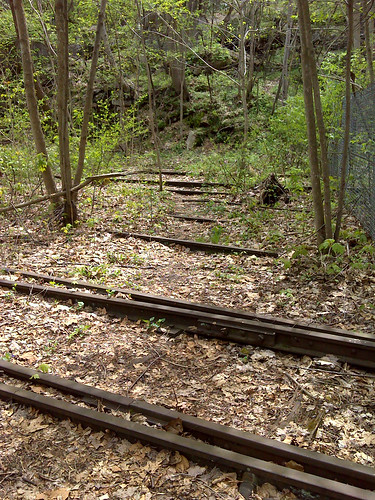 20150418_New_River_Gorge_016