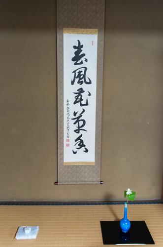 春の大茶盛-11.jpg