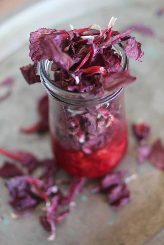 paticheri hibiscus flower syrup (22)