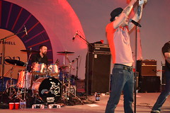 024 Gin Blossoms