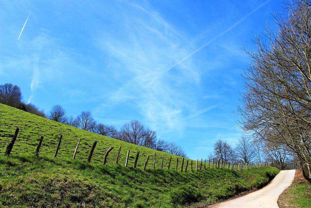Imagen gratis de un sendero junto a un campo vallado