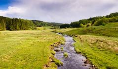 River Tyne in Kielder Forest