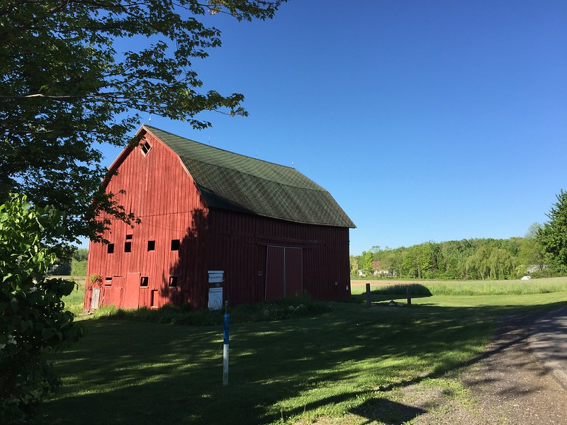 My favorite barn still stands and looks grand