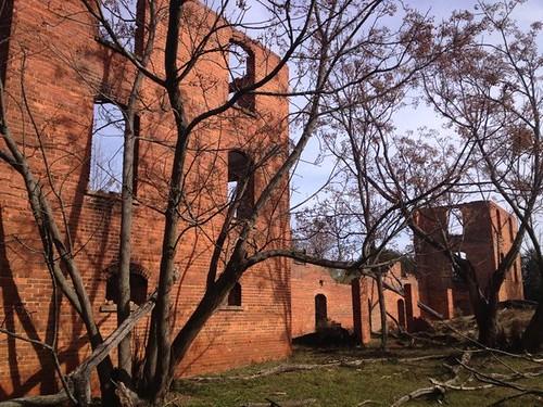 Edisto Academy Ruins
