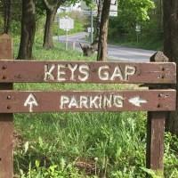 Hiking Keys Gap - Appalachian Trail