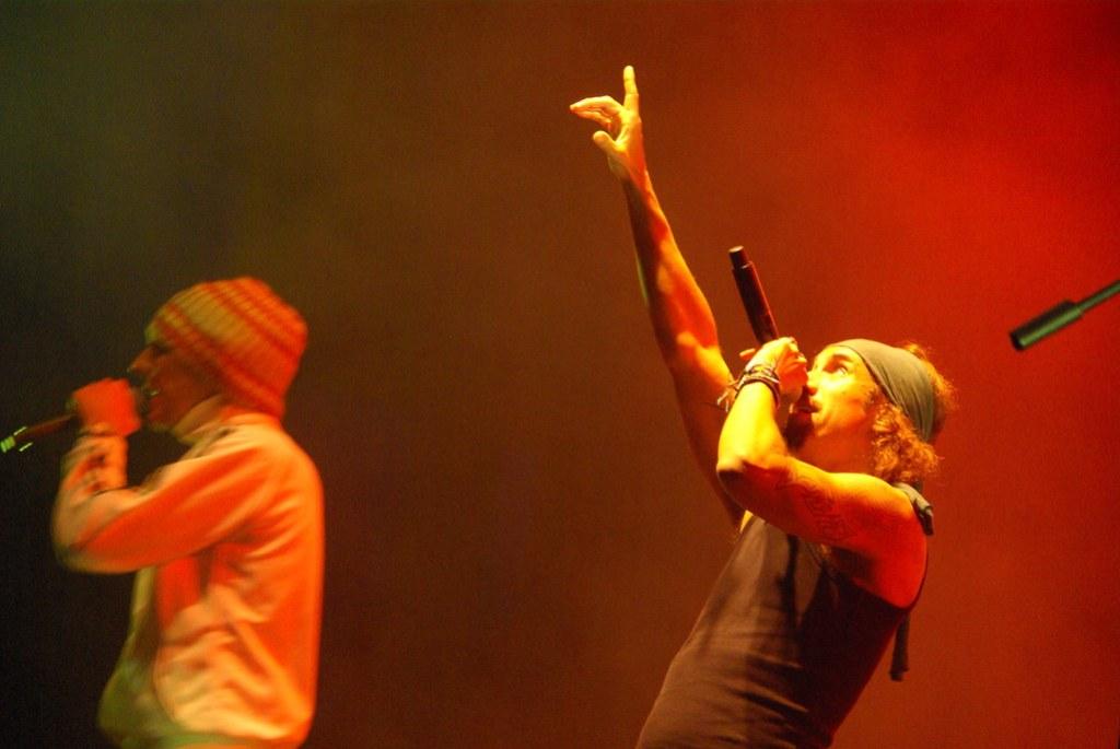 Imagen gratis de Macaco en concierto