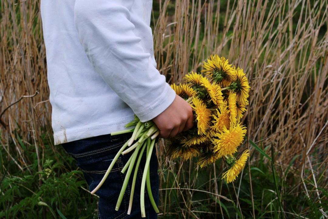 Hetliger Schanze/Sohn II pflückt Blumen