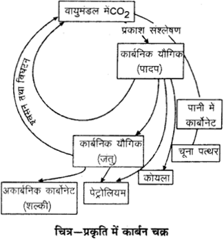 RBSE Solutions for Class 9 Science Chapter 13 pariyavaran 10