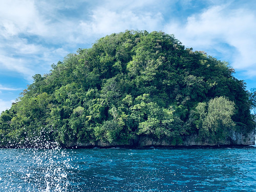 One of hundreds of no man islands in Palau