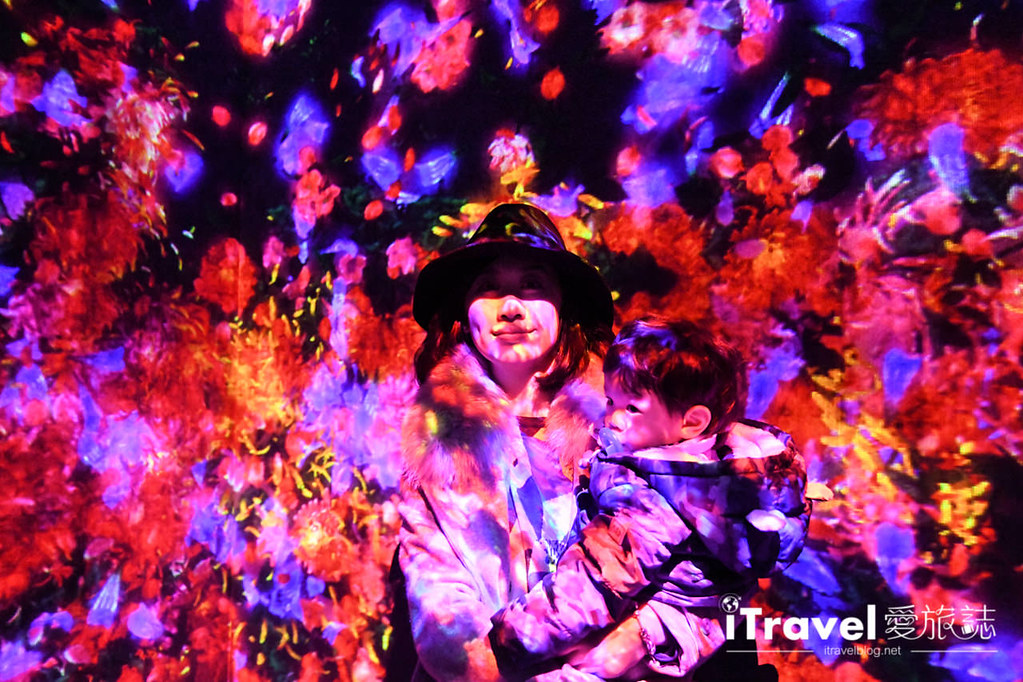 東京藝術展覽 teamLab Borderless (25)