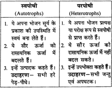 RBSE Solutions for Class 9 Science Chapter 13 pariyavaran 8