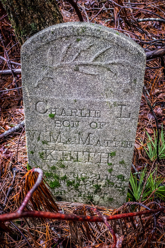 Tall Pines Preserve and South Saluda Church Cemetery-45