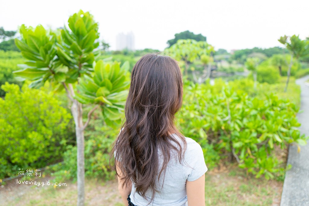 v髮,個人分享,捲髮,高雄髮型,髮型 @薇樂莉 Love Viaggio | 旅行.生活.攝影