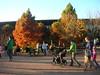 Morton Arboretum, 11/1/2009