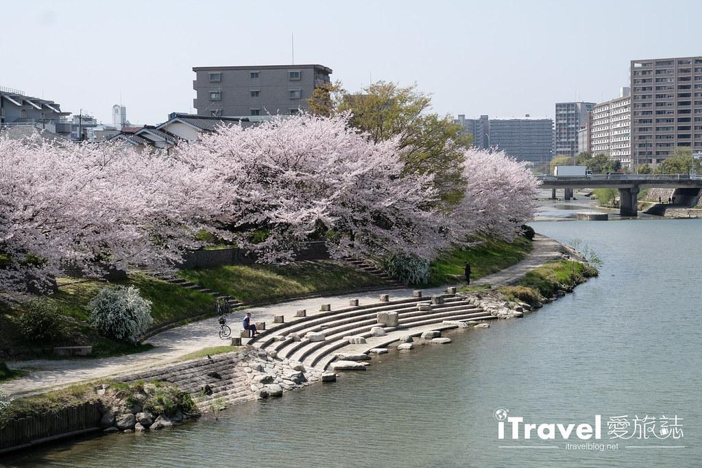 福岡賞櫻景點 美野島南公園 (29)