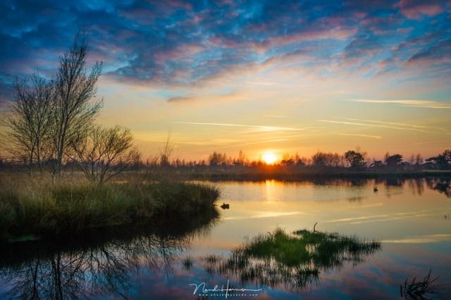 Zonsondergang in de Groote Peel. Bewerkt uit een enkele opname (Sony A7R III + FE24-70ZA @ 35mm | ISO100 | f/11 | 1/80 | bewerkt in Lightroom naar smaak)
