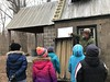 Maple Sugar Time, 2 March 2019