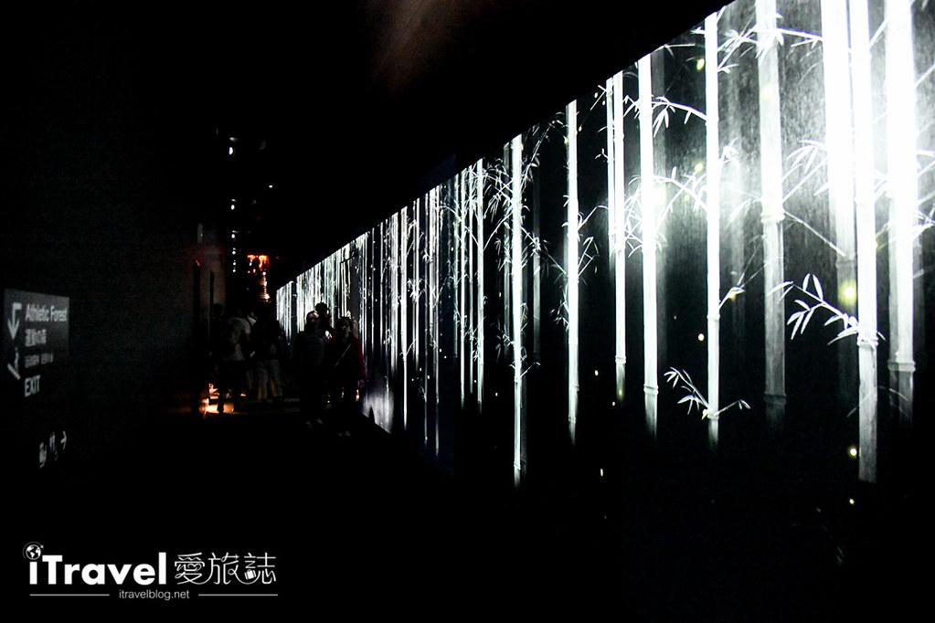 東京藝術展覽 teamLab Borderless (92)