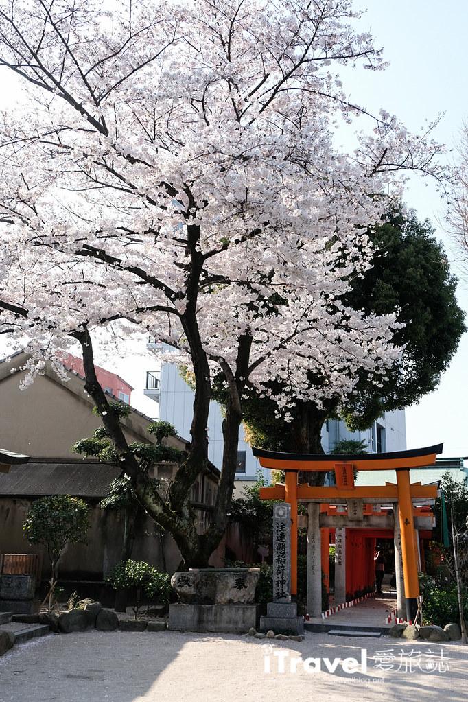 福岡賞櫻景點 櫛田神社 (24)