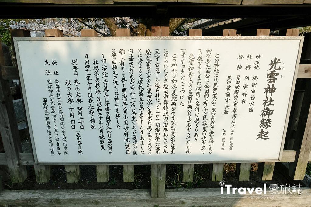 福岡賞櫻景點 西公園Nishi Park (41)