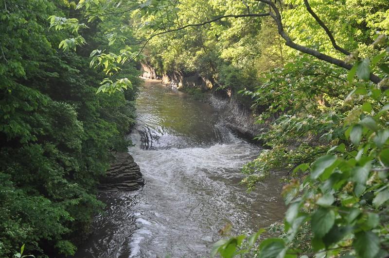 Creek at Kankakee River State Park