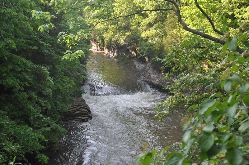 Creek at Kankakee River State Park