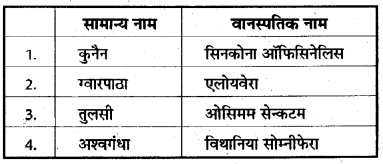 RBSE Class 10 Science Model Paper 1 13