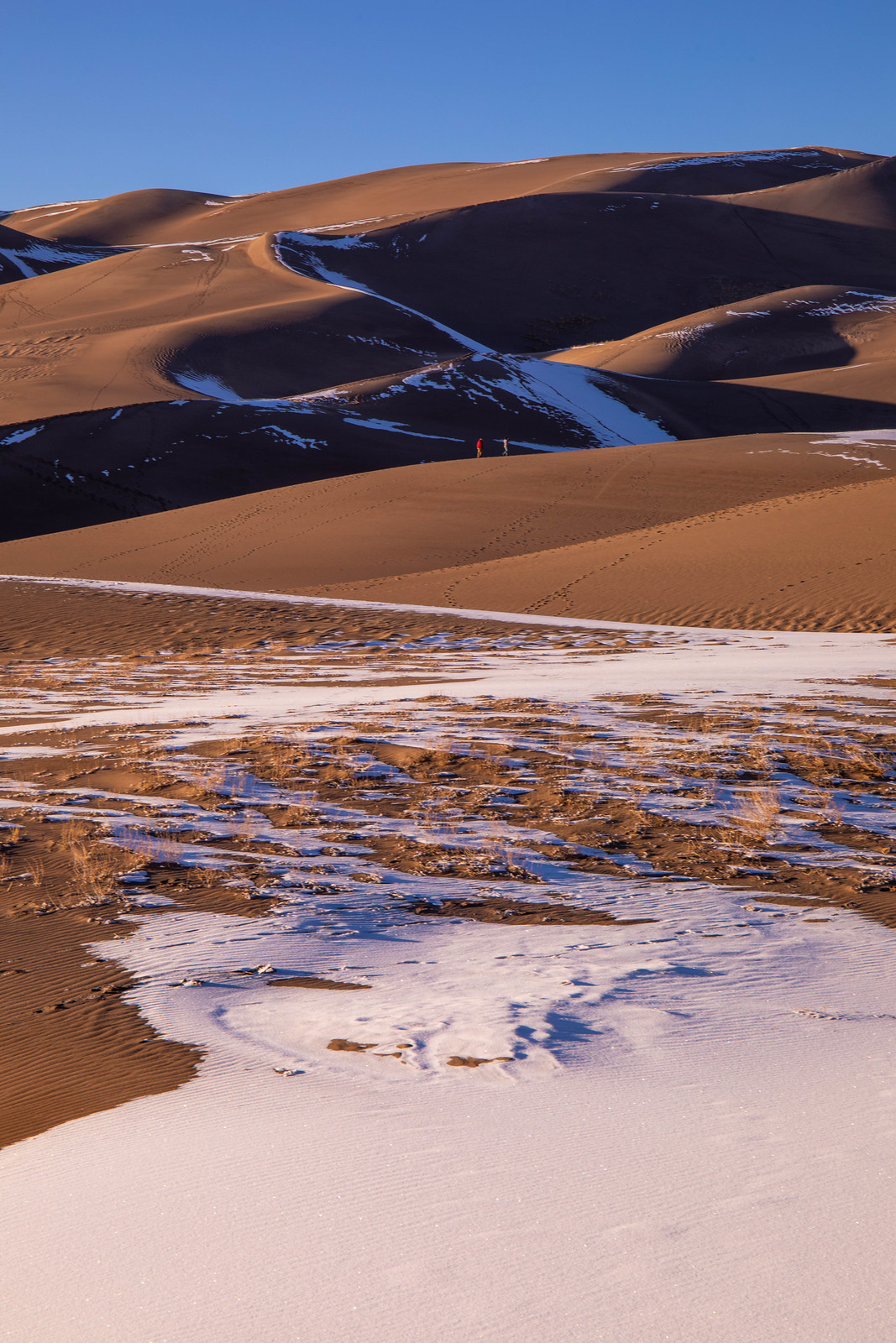 12.29. Great Sand Dunes National Park