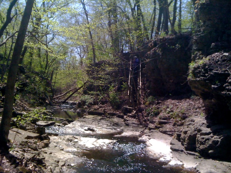 Sagawau Canyon in Cook County