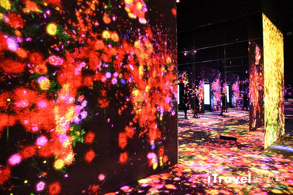 東京藝術展覽 teamLab Borderless (28)