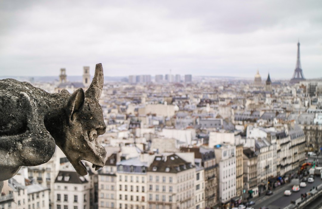 Cattedrale di Notre-Dame, vista dalle torri
