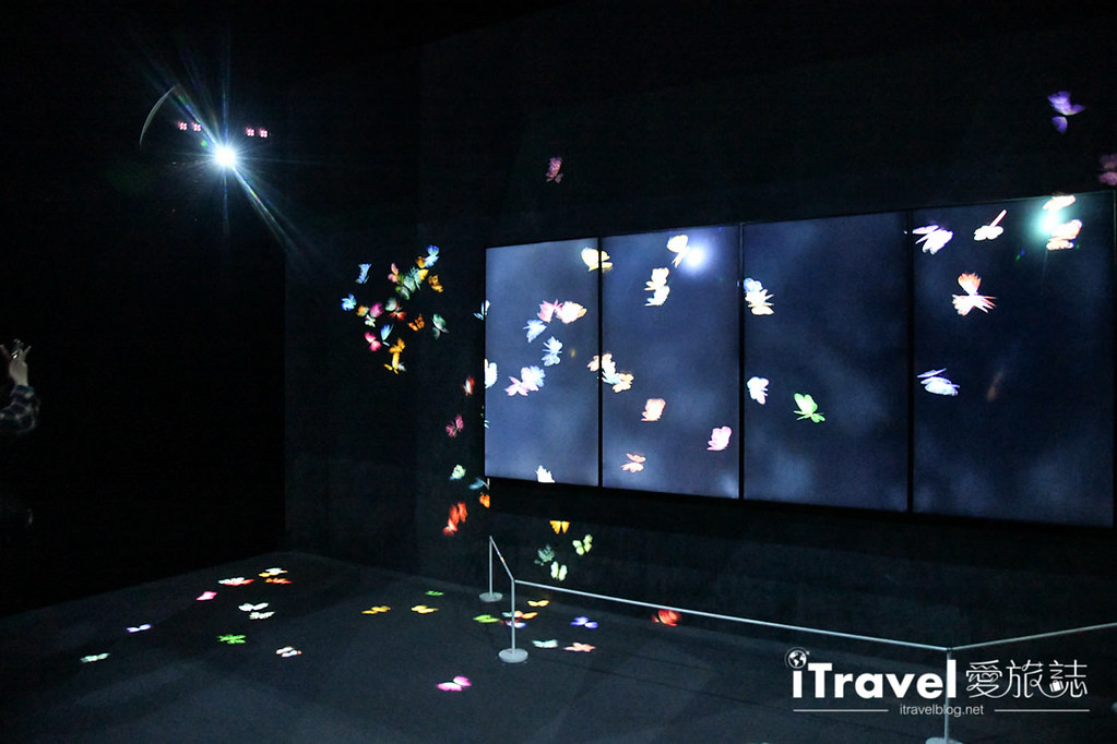 東京藝術展覽 teamLab Borderless (13)