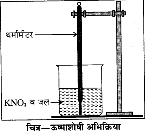 RBSE Solutions for Class 8 Science Chapter 4 Q48