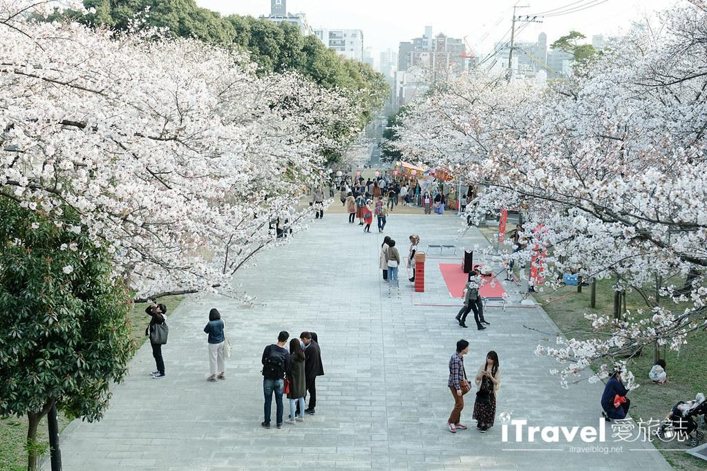 福岡賞櫻景點 西公園Nishi Park (34)
