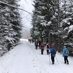 2019-01-09 Zollbrück_Fred (33)