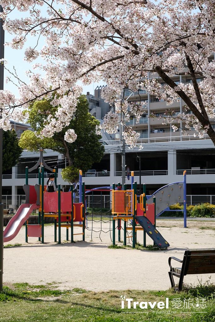 福岡賞櫻景點 美野島公園、東領公園 (18)