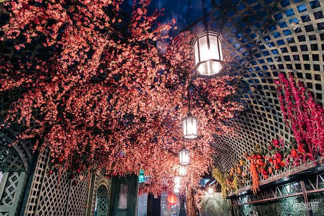 Cherry Blossom Bar 2019-26